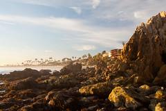 20100102_Corona_del_Mar_0006.jpg (Ryan and Shannon Gutenkunst) Tags: ocean ca sky usa beach water sand rocks palmtrees coronadelmar coronadelmarstatebeach