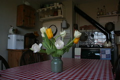 Tulips (ART NAHPRO) Tags: life england kitchen rural bread spring interior country rustic bin shelf stove tulip vase 2012 etchingham