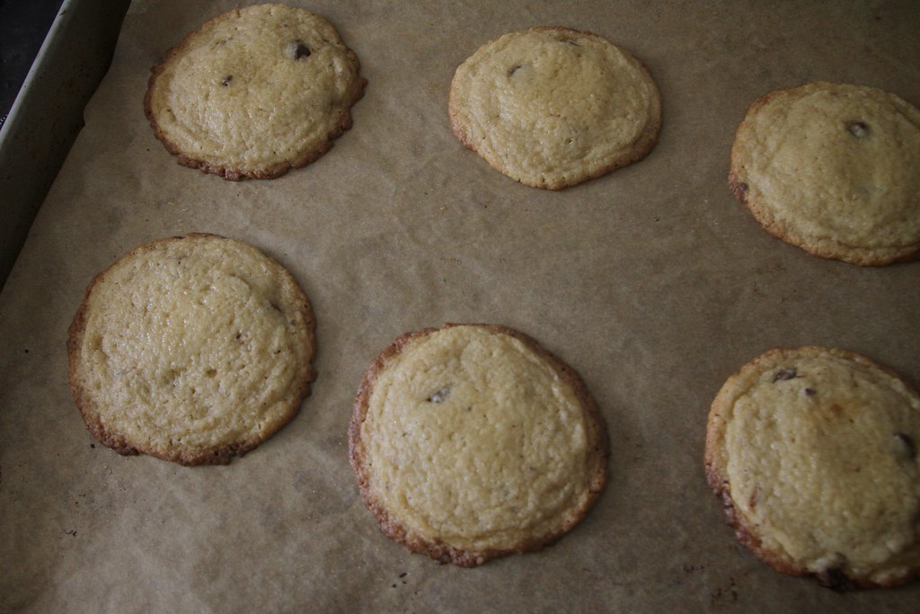 chocolatechip cookies (7)
