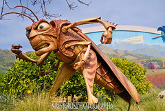 a day at disneyland #6 : hopper (Kris Kros) Tags: pictures life california park ca kids disneyland cartoon disney bugs adventure socal hollywood animation land kris anaheim hopper kkg backlot bugslife kros kriskros kkgallery