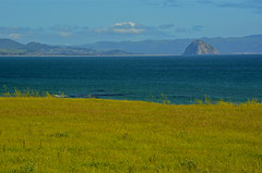 Morro Rock (nebulous 1) Tags: sea seascape nature water rock landscape nikon pacificocean morrorock coth nebulous1