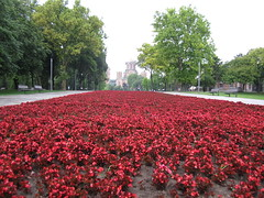 the Path of Red Flowers (m*lena) Tags: church europe serbia belgrade crkva stmarkschurch tašmajdan crkvasvetogmarka tasmajdanpark