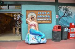 05-15-12-17-13-53.jpg (bitnoots) Tags: derek kauai hi hanaleibay