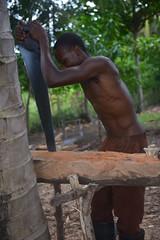 real carpenter (luca.gargano) Tags: travel haiti caribbean gargano ayiti lucagargano ayti