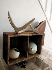 antlers (das_kaninchen) Tags: wood ceramic collection pottery beuys antler