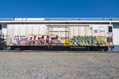 ASIC  YUK (TRUE 2 DEATH) Tags: railroad art atc train graffiti tag graf traintracks trains railcar boxcar railways railfan freight reefer yuk sluts freighttrain armn asic benching freighttraingraffiti