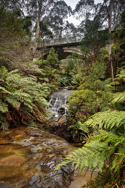 Chelmsford Bridge at Leura Cascades