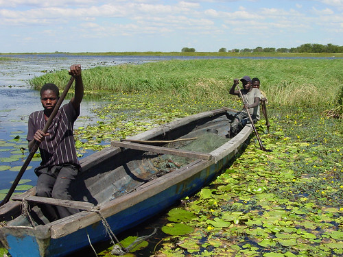Fish traders in the Kafue flats plain, Zambia. Photo by Alphart Lungu, 2001