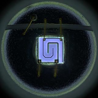 365 nm LED