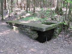 2012-050408 (bubbahop) Tags: ruins thirdreich nazis wwii poland worldwarii wolfs hitlers worldwar2 2012 lair hqs bunkers okh ketrzyn wolfsschanze mamerki ktrzyn mauerwald europetrip25