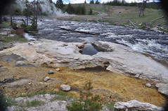 East Sentinel Geyser (Sentinel Geyser) (noon time, 4 June 2013) 1 (James St. John) Tags: morning hot spring glory group basin east upper springs yellowstone wyoming geology geyser sentinel geysers upper hot spring group springs morning basin sentinelgeyser