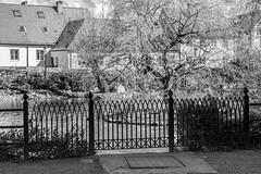 Fence (Infomastern) Tags: blackandwhite bw fence pond ystad