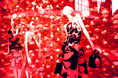 Bouquet Bonanza (Georgie_grrl) Tags: flowers toronto ontario cool crossprocessed mannequins funky pentaxk1000 colourful queenstreetwest windowdisplay thebay rikenon12828mm velviaslidefilm