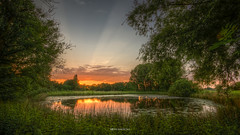 The fishpond (Patrick Mortko) Tags: park trees sunset sky sun sunlight plant water grass night landscape outside evening pentax outdoor thenetherlands serene fishpond landschap k3 sigma1020mmf456 doeveren