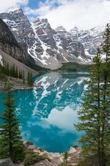 Moraine Lake, Banff (mark willocks) Tags: lake canada mountains water reflections alberta rockymountains morainelake sprucetrees