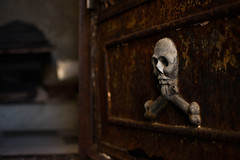 cemetery (M.Sh1no) Tags: skull calavera creepy