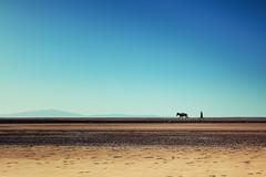 A man, a donkey (Thierry Hennet) Tags: morning sunlight man zeiss landscape desert sony salt donkey sunny filter traveling ethiopia greatriftvalley a900 neutraldensity graduatednd danakil hottemperature cz2470mmf28
