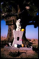 exhortation (Doubletee) Tags: california angel geotagged shrine kitlens altar aviary mojavedesert cima mojavenationalpreserve gobigblue canonefs1855mmf3556