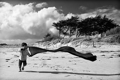 blowin' in the wind (Thomas Leth-Olsen) Tags: trees boy bw beach clouds kid sand play wind lorient