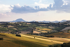 Landscape: Rural Italian Land (Gianluca, very busy!) Tags: blue trees light red summer italy orange home colors yellow rural canon landscape europe hill marche jesi collina ancona manwork manuallens agricolture natureholiday 5dmarkii alternatelens