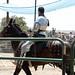 Renaissance Pleasure Faire 2012 044