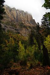 Hiking in Ordesa valley (Northern Adventures) Tags: autumn mountain mountains fall nationalpark spain october y valley monte pyrenees perdido pyrénées ordesa pirineus pirineo ordesaymonteperdido ordesavalley