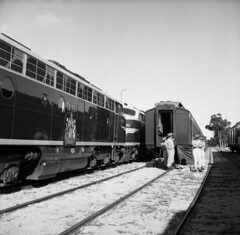 Army staff unloading luggage from Royal Train (Public Record Office Victoria) Tags: queen queenelizabethii royal australia victoria train royaltrain army crest royalvisit royaltour tour visit 1954 fifties blackandwhite unloading luggage dowlingforest 6march1954 staff clerestorycoachaustralianstock
