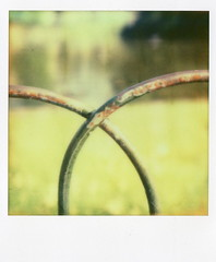 whilst crossing paths with polaroid people (elin*) Tags: park camera lake colour london film field st closeup fence lens polaroid sx70 cool shade shallow depth meet jamess impossible px70 2652012