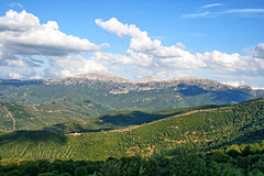 Il Monte Corrasi (Oliena) - Panoramica da Orgosolo (Franco Serreli) Tags: sardegna verde montagne sardinia monte barbagia oliena nuorese corrasi montecorrasi montagnesarde