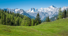 R_015  Brandenberger Alpen  Rofangebirge (wenzelfickert) Tags: trees sky mountains forest landscape austria tirol sterreich spring hiking meadow wiese himmel berge alpen wald bume wandern frhling rofangebirge bergmassiv brandenbergeralpen