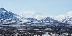 Denali (davedawsonfbks) Tags: winter alaska landscape pentax denalinationalpark k30 da50135