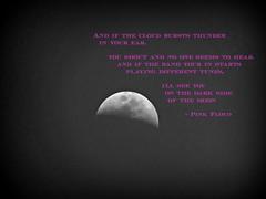 Inspiration Challenge (Corgibird) Tags: music moon lyrics poetry song brain pinkfloyd poems floyd lunatic lunar lyricspink damagesong