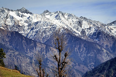 G l o r i o u s (_Amritash_) Tags: winter mountains trek landscapes glorious peaks himachal himalayas mountainscape snowcappedmountains travelindia snowcappedpeaks gloriousmountains travelinindianhimalayas