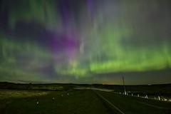 Fences lead to Magic (John Andersen (JPAndersen images)) Tags: road sky green twilight purple fences pump alberta aurora oil pumpjack bearspaw