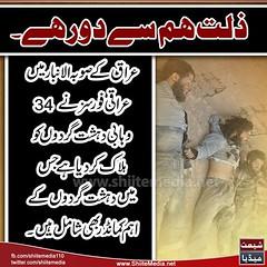 #____         34                  (ShiiteMedia) Tags: pakistan 34 shiite         shianews      shiagenocide shiakilling shiitemedia shiapakistan  mediashiitenews      shia