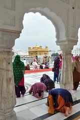 India - Punjab - Amritsar - Golden Temple - 221 (asienman) Tags: india sikh punjab amritsar gurudwara goldentemple harmandirsahib asienmanphotography