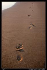 Se hace camino al andar (meggiecaminos) Tags: beach water sand agua footprints playa arena morocco marocco acqua marruecos spiaggia sabbia impronte huellas asilah sidimghait