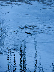 The Disturbance (Steve Taylor (Photography)) Tags: city blue newzealand black cold reflection water river spring ripple monotone canterbury nz southisland cbd eddy avon disturbance monocolor monocolour