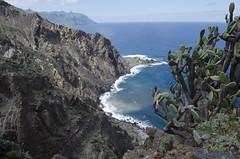DSC_0130 (AlfredoGutirrez) Tags: blue sea naturaleza mountain nature azul trekking mar paisaje tenerife montaa senderismo naturalpark parquenatural anaga roquesdeanaga