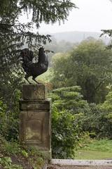 Bronze cockerel, Chatsworth House gardens, near Bakewell, Derbyshire, UK (Ministry) Tags: uk sculpture house home church statue bronze garden estate derbyshire steeple bakewell chatsworth stpeter stately cockerel edensor
