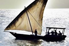 Zanzibar Afternoon (Timothy Hastings) Tags: ocean africa seascape reflection water sailboat nikon vessel sail ripples zanzibar nikkor siuth ves lanteen d810 wansea