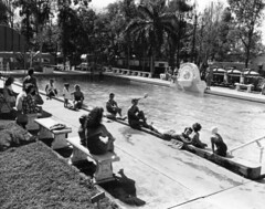 Residents at the pool at the Belle Haven Trailer Park: Miami, Florida (State Library and Archives of Florida) Tags: camping tourism swimming outdoors florida miami palmtrees pools recreation sunbathing departmentofcommerce recreationalvehicles ch
