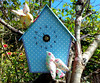 "Birdhouse Clock (1) • <a style=""font-size:0.8em;"" href=""http://www.flickr.com/photos/29905958@N04/6937591338/"" target=""_blank"">View on Flickr</a>"