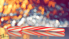 Candy Cane (Zizi Ali) Tags: red white cane lights candy bokeh