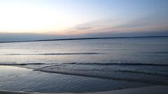 IMG_5802 (Martina Mastromonaco) Tags: beach vineyard martha s subset