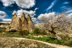 Cappadocia in spring , Turkey (Nejdet Duzen) Tags: trip travel cloud nature turkey spring trkiye cappadocia bahar bulut kapadokya turkei seyahat nevehir doa