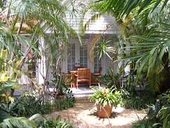 Our Back Yard (Roy Richard Llowarch) Tags: plants teacher tropical keywest teachers floridakeys keywestflorida tutors schoolteacher schoolteachers tropicallife livingtropical