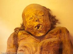 P6012138-1 (tomas castelazo) Tags: mexico mummy momia momias momiasdeguanajuato guanajuatomummies