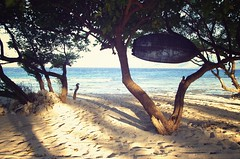 Saltwater, sand, wind and a hammock (alxH3o) Tags: ocean travel sea west beach vintage indonesia island lomo asia indian reef