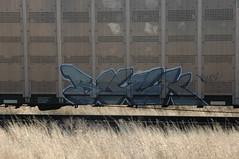 Buck (A & P Bench) Tags: train bench graffiti fan graf stock rail canadian graff freight rolling fr8 benching